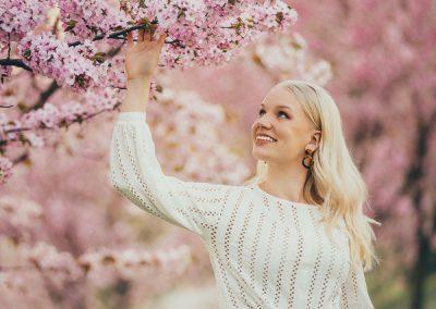 Alina kirsikkapuu 01261